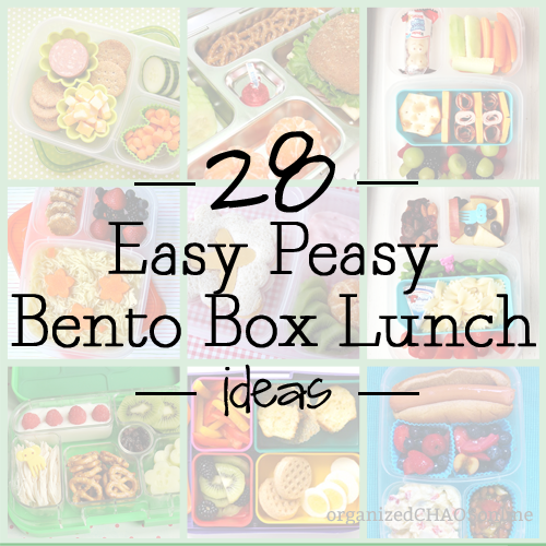 28-bento-box-lunch-ideas