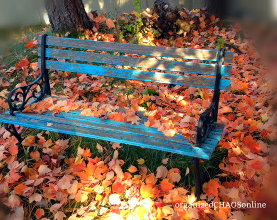 How to Quick Prep your Yard for Winter | organizedCHAOSonline