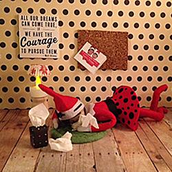 Elf On The Shelf Ideas Organizedchaosonline